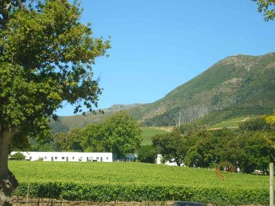 Beautiful Constantia Winelands, 20 minutes away