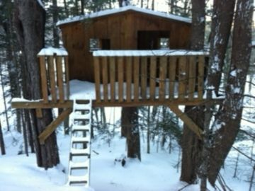 Tree Fort for the Kids to Play In