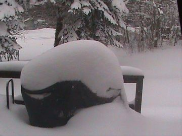 Our grill covered in snow