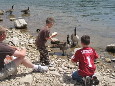 Feeding the ducks at Branson Landing...never gets old!