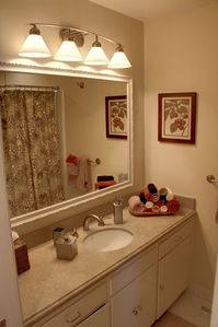 Luxurious downstairs guest bath has shower over tub.