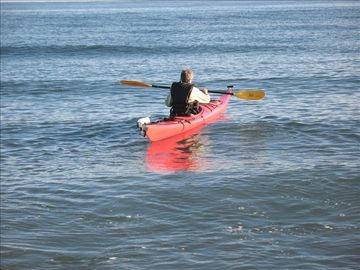 Enjoy Kayaking right off the beach