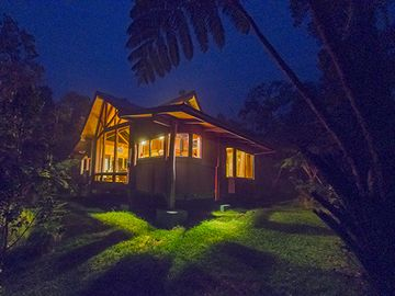Volcano cottage rental - Kipuka at dusk. This exquisite photo by guest Tom Turner.