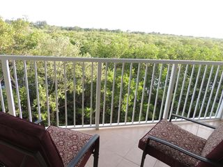 Ruskin townhome photo - Enjoy the mango forest conservation area off the master bedroom