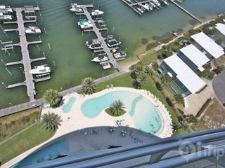 Orange Beach condo photo - balcony view of pool