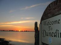 Cozy Cottage Walk To Historical Downtown Dunedin Florida Close To Area Beaches