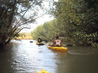 Kayaking on the Nosara River