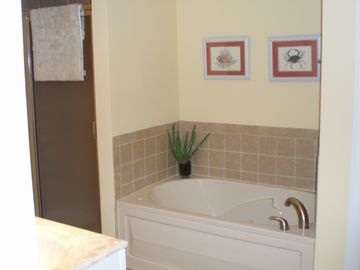Master bathroom w/jetted tub & separate shower