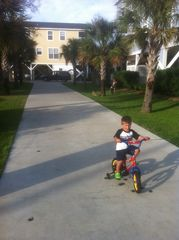 Garden City Beach house photo - Our VIP guest, Mr. Nate, riding on the super long driveway