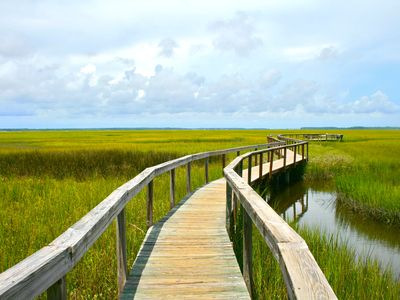 boardwalk through the marshes