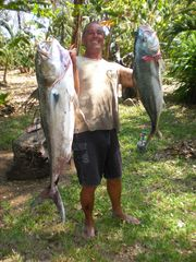 Montezuma house photo - world class fishing