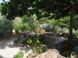 Bonaire house photo - Wander private paths in the garden