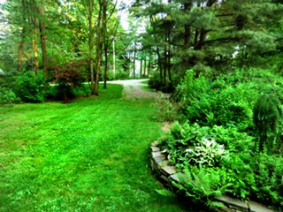 Great Barrington house photo - front yard, gardens and driveway