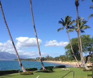 View of lawn and beach from our lanai.