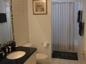 Family bathoom - granite counter tops - Tub with shower above - door out to deck
