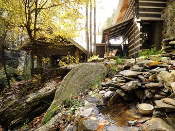 Boone cabin rental - Secluded Natural Setting at Back Yard