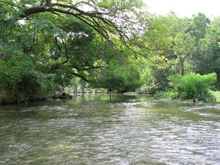Lampasas house photo - Spring time on the creek.