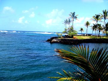 Reef protected Kapoho Bay - a great place to visit!