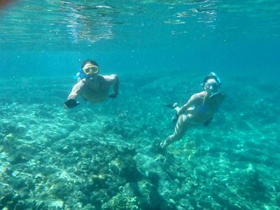 Pahoa cottage rental - Snorkeling in the clear Waiopae tidepools