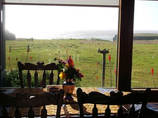 diningrmbirdseyevw - Mendocino house vacation rental photo