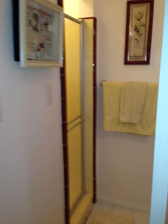 Walk-in Shower in 2nd Bathroom