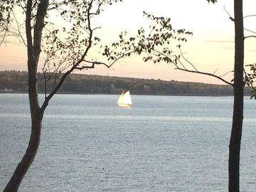 View from dining room. Sailboat coming into Belfast Harbor.