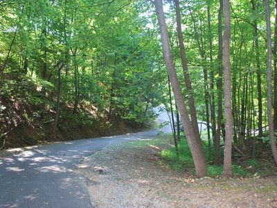 DRIVEWAY IS NOT STEEP JUST A LITTLE CURVE & BEAUTIFUL FOREST WITH LOTS OF NATURE