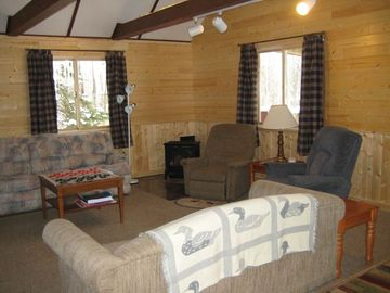 Grand Marais cabin rental - There is plenty of room for everyone to relax around the gas fireplace.