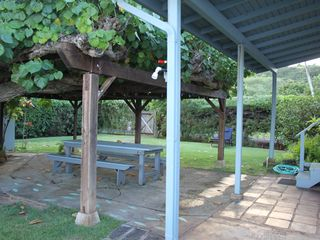 Haleiwa house photo - Hau Tree arbor and picnic table