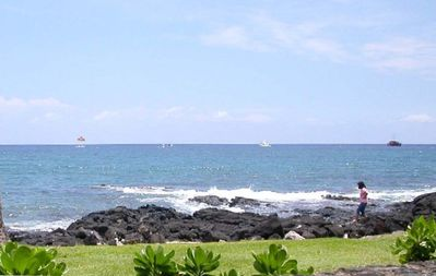 Explore tide pools & see turtles on the lava rocks in front of the condo
