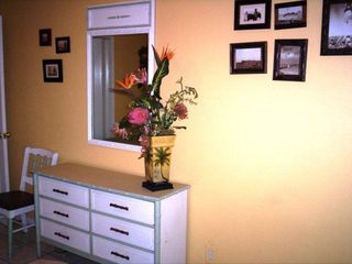 South Padre Island condo photo - tropical island decor.