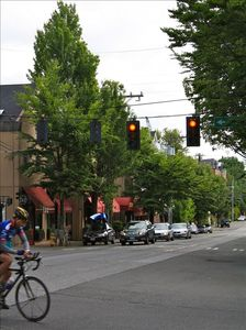 Vibrant Madison Valley shops and restaurants...and bike route