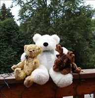 Hanging out in Alaska with my beary best buddies
