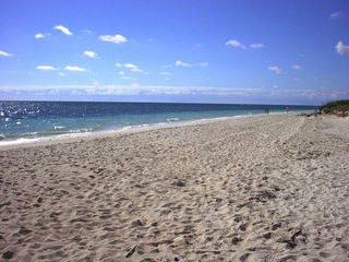 Grand Bahama Island condo photo - The Beach 100 Steps Away!