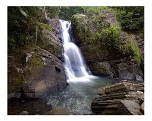 Humacao villa photo - Waterfalls in El Yunque rainforest