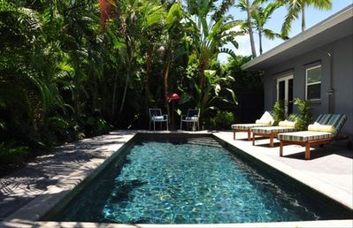 Enjoy the lush, private pool area. Fully fenced with a deep, heated pool