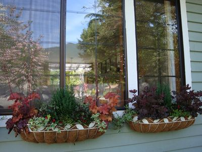 Windowboxes Along the Front