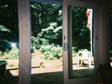View of Woods thru Rear Sliding Door
