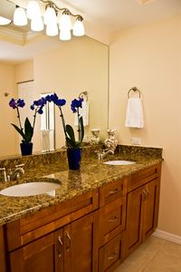 Bathroom, double sinks,shower/tub combo,linen closet.