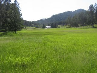 Custer cabin rental - The meadow of Elk Valley