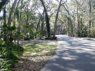 Amelia Island house photo - View from driveway, going west