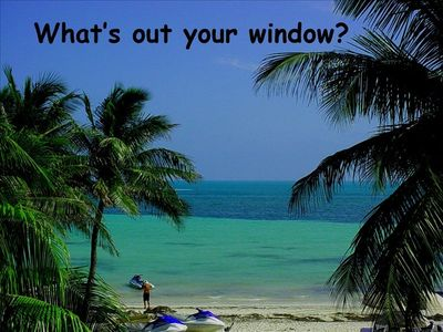 What's out your window?