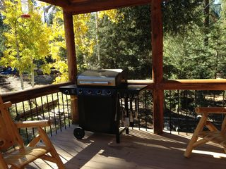 Duck Creek Village cabin photo - Back Porch with BBQ