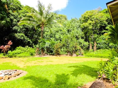 Very spacious yard surrounded by gardens, palms, and a creek.
