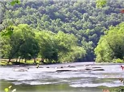 Hayesville cabin rental - Enjoy This Incredible View From The Edge Of Our Property