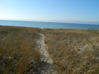 Montague cabin photo - Path through the dunes to the beach.