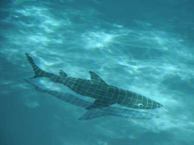 Swim in the Pool at your own risk with our Mosaic Shark