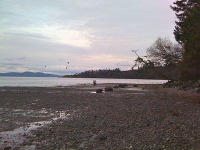 Beachcomb local shores or just enjoy the quiet coves of Mt. Doug Beach.