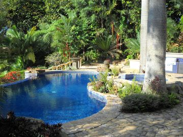 Deep water pool is surrounded by lush palm trees and big view of pacific ocean