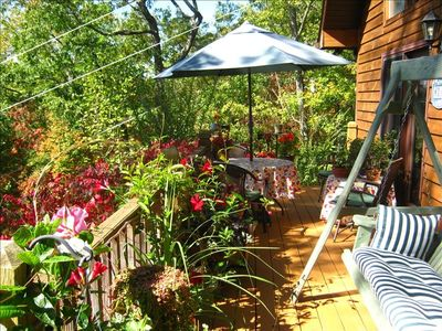 The swing, the beautiful flowers, dining out...you'll love the 40' deck!